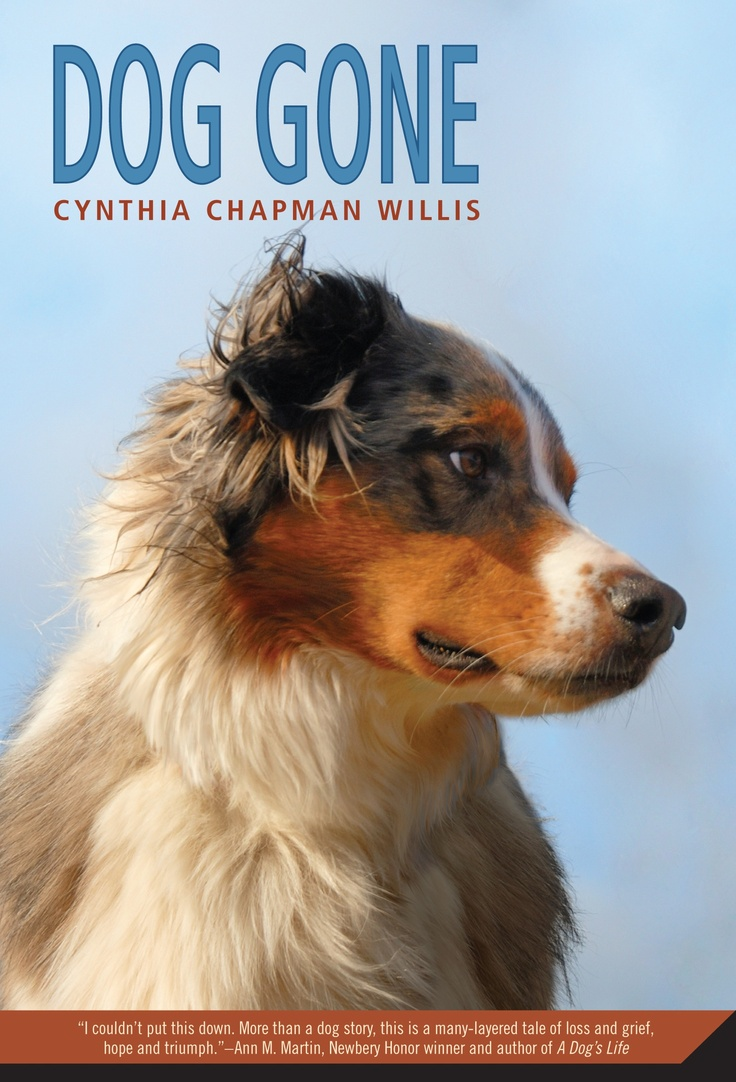 17 best images about dog gone a middle grade novel on for Square fish publishing