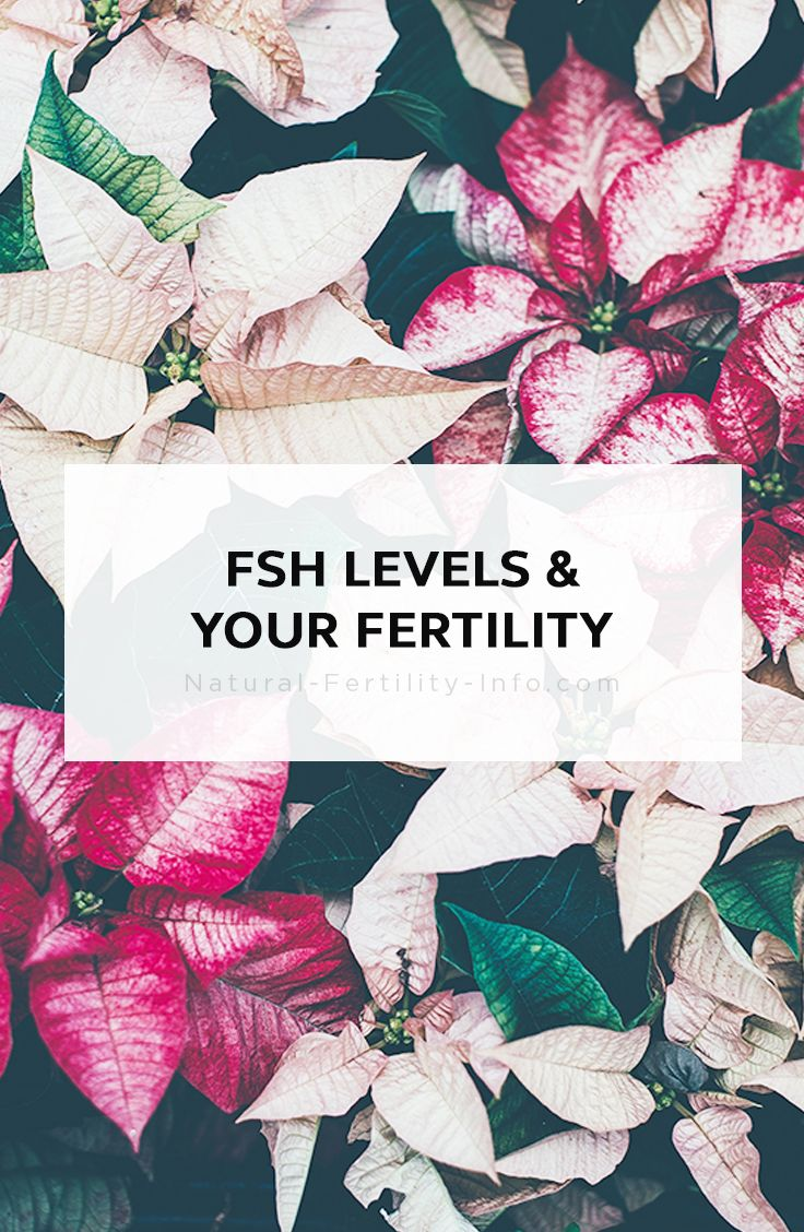 In both men and women, having a balanced level of hormones is essential to proper fertility. FSH, or follicle-stimulating hormone, is a naturally occurring hormone that is made by the pituitary gland in the body. #FSHlevels #fertility #infertility #ttc #naturalfertility #NaturaFertilityInfo #NaturalFertilityShop
