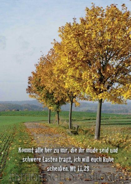 christliche Postkarte 45 - Matthäus, Trost, Krankheit - Bibel a la Carte - Christliche Karten