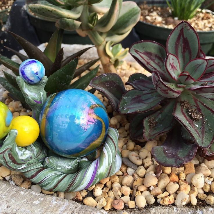 Like fairy gardens? You'll love it at McLeod Valley this year! #fairygarden #greenhouse #gardening #spring #awesome
