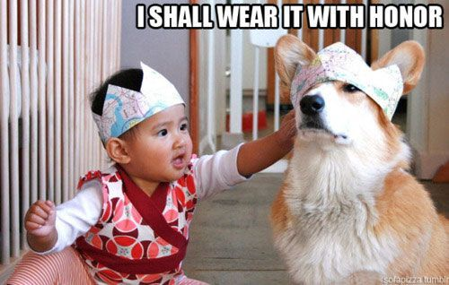 This is the greatest gift a baby ever gave a dog.Corgis, Laugh, Dogs, Honor, Funny Pictures, Funny Stuff, Asian Baby, Things, Animal