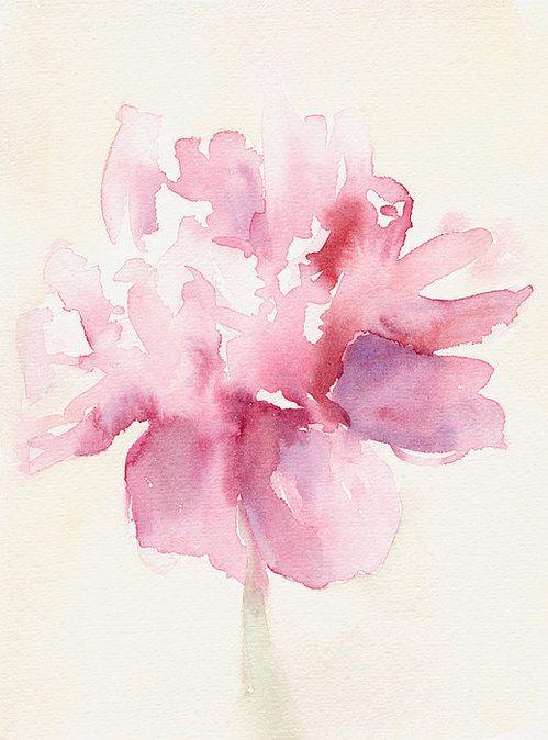 Pink Peony Watercolor Paintings Of Flowers Print By Beverly Brown Prints
