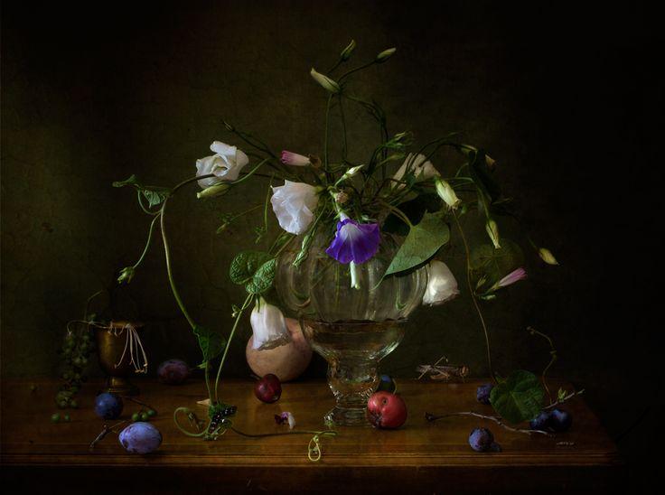 foto: PORTA ABERTA | Fotógrafo: Julia Medvedev | WWW.PHOTODOM.COM