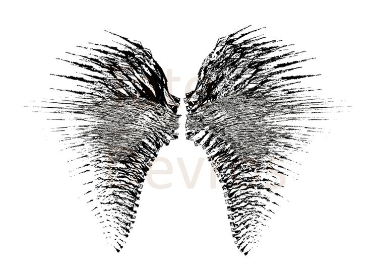 Black Wings:Ink paint illustration by Tate Devros. 1024 x 768 pixels.PNG file type Buy, download and share on social media, web or print.