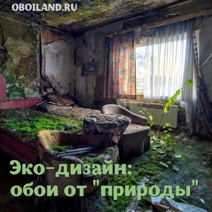 """Мох вместо обоев - это, конечно, круто, но не нужно доходить до крайности )), ведь зелёные обои можно купить в OBOILAND.RU и это недорого. На крайний случай, можно вместо мха на стенах использовать фотообои с темой """"Природа"""", тоже вариант http://www.oboiland.ru/catalog/priroda/ #квартира #ремонт #интерьер #эко"""