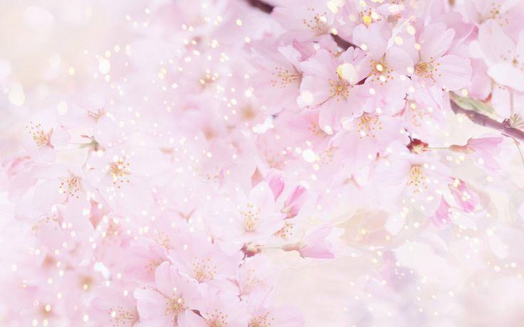 732501__beautiful-background-flowers_p.jpg (969×606)