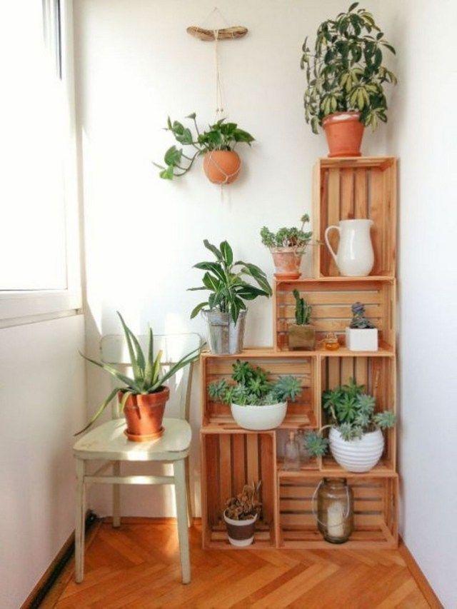 61 Simple House Plants Indoor Decor Ideas Natural Home Decor