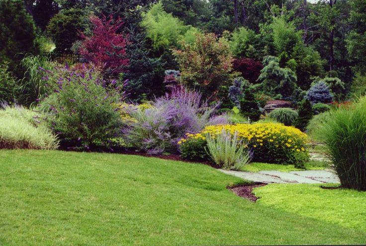 37 best bushes shrubs and plants images on pinterest for Perennial landscape design