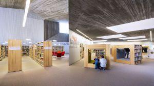 Kuinka syntyy pöhisevä kirjasto?