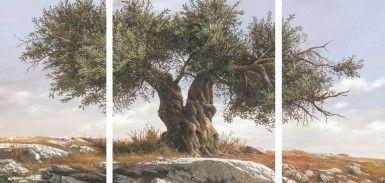 ΕΛΑΙΟΤΥΠΙΑ THE OLD TREE