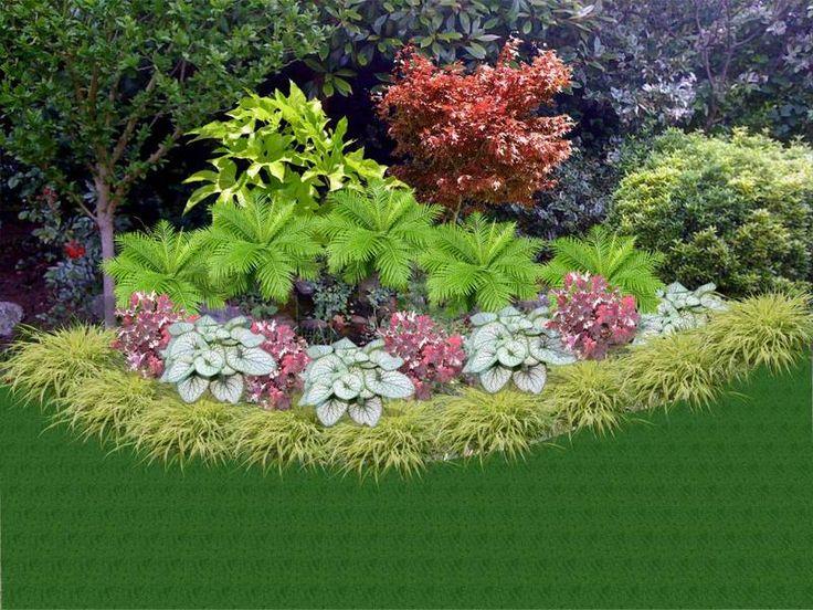 Hakonechloa macra auerola grass for the edging a few for Plants for small patio gardens