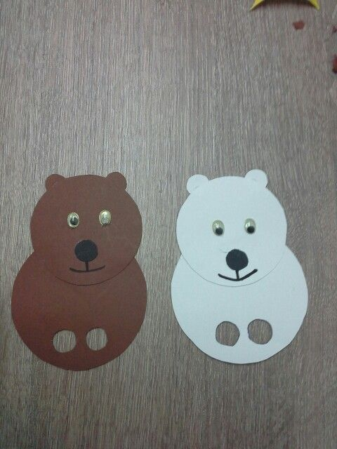 Brown bear & polar bear