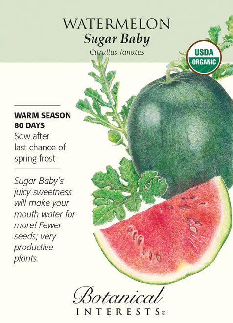 Sugar Baby Watermelon Seeds - 1.5 grams - Organic - Botanical Interests