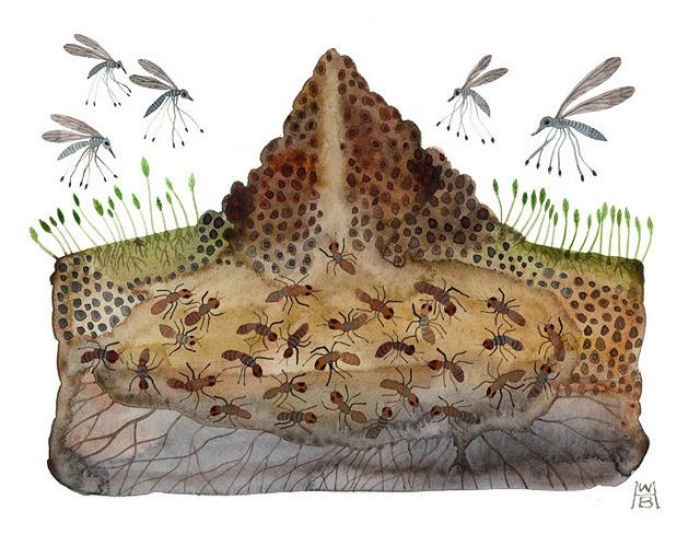 для классических картинка анимация муравейник видите, приготовление