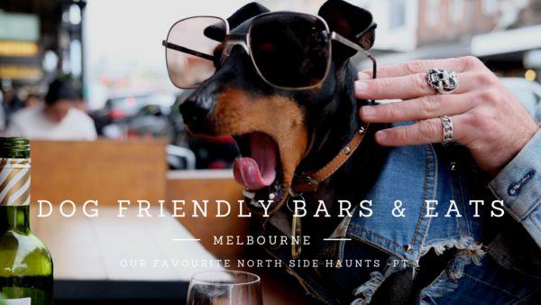 Melbourne's Dog Friendly Bars and Cafes www.pethaus.com.au
