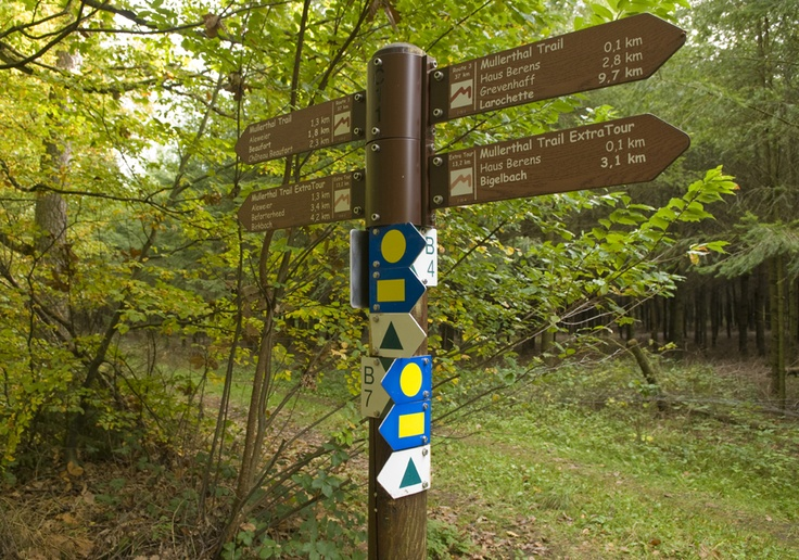 Mullerthal Trail in Larochette, Luxembourg, where we're headed again on hols this year. Fantastic area for running.