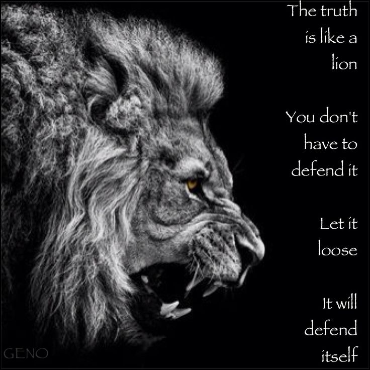 the truth // lion // defend // leo: Leo Thang, Leo I, Leo Richard, Leo Lionesses, Leo Women, Leo Stuff, Leo Girls, August Leo, Leo Quotes