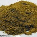 Curry – amestec de mirodenii