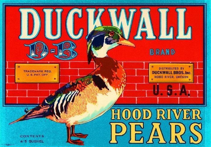 duck river latino personals Breaking atlanta news, local headlines, weather, and sports for atlanta from fox 5 atlanta, waga.