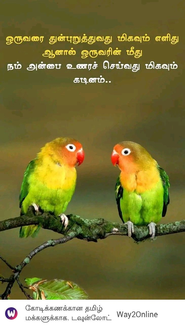 Pin by Lavanya on A Tamil quotes in 2020 Animals