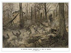 Becoming Devil Dogs: Battle of Belleau Wood: Battle of Belleau Wood