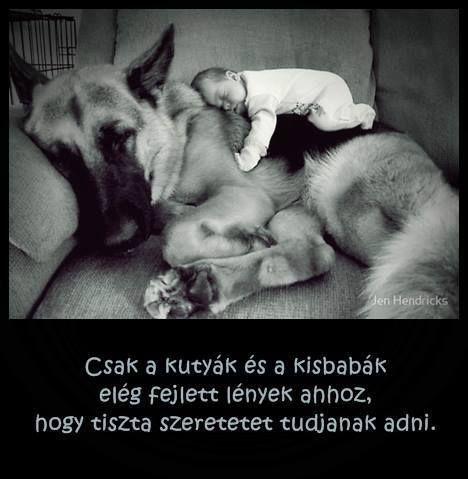 Csak a kutyák és a kisbabák elég fejlettek ahhoz, hogy tiszta szeretetet tudjanak adni.