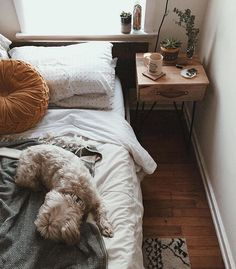 Learn more about Essential Home's pieces at http://essentialhome.eu/ and discover the best bedroom interior design inspirarions for your new bedroom project! Micentury and still modern lighting and furniture