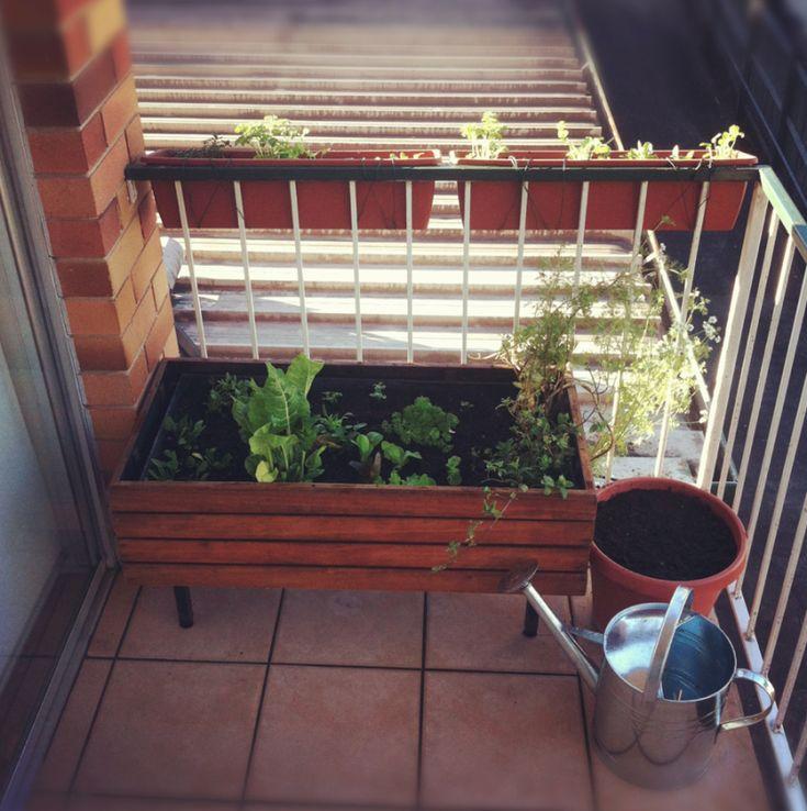 elegant creative balcony garden