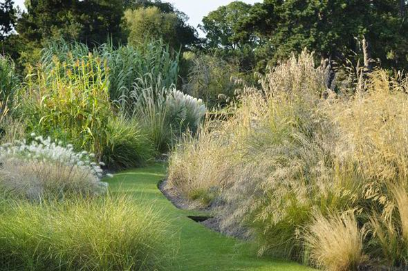 1000 images about alan titchmarsh on pinterest for Ornamental grass garden