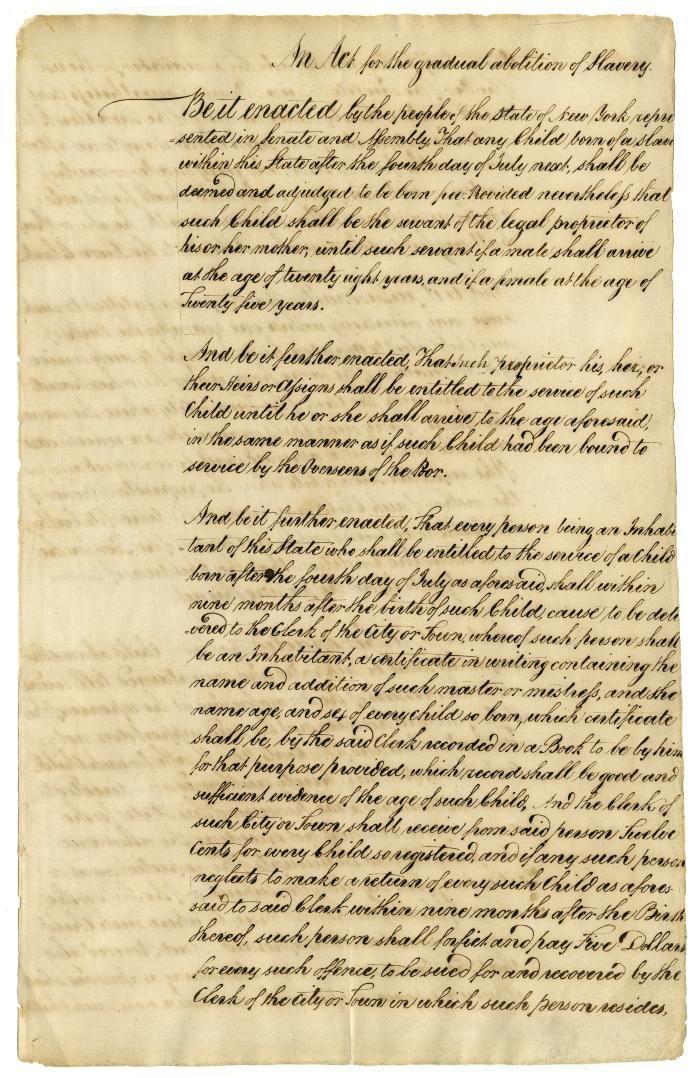 American Slavery  American Freedom Argument Evaluation
