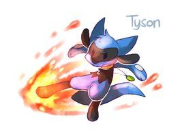 can Riolu learn Aura Sphere In Pokemon Games? | Yahoo Answers