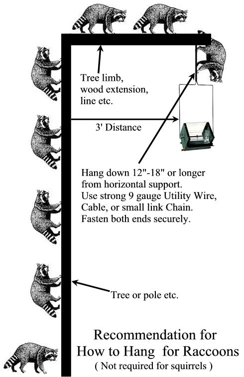 How to hang a raccoon-proof bird feeder. This is also squirrel-proof.