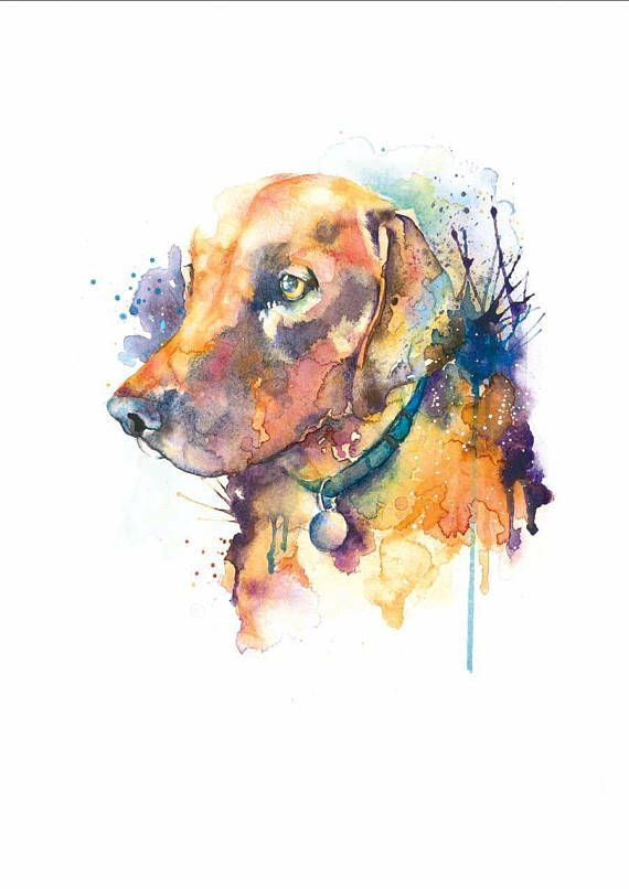 Redfox Labrador Art Print Dog Illustration Labrador Labrador