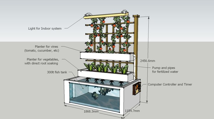 home aquaponics system | Image for *shipped to your location