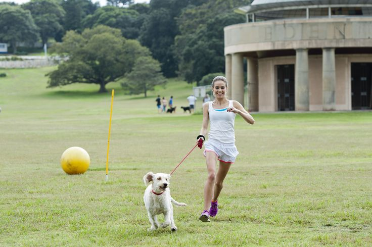 To launch the new Perfect Weight range from Hill's Pet Nutrition Australia, we organised a doggy bootcamp for media, celebs and their furry friends! The dog-friendly event was hosted by celebrity dog trainer Farmer Dave.