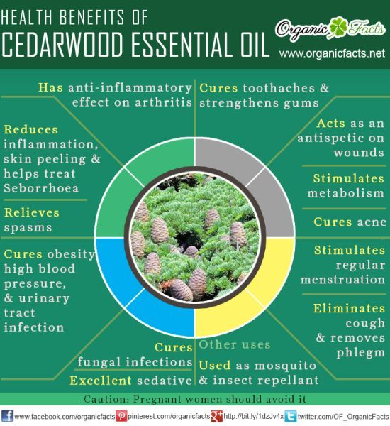 The health benefits of Cedar Wood Essential Oil can be attributed to its properties like anti seborrhoeic, anti septic, anti spasmodic, tonic, astringent, diuretic, emenagogue, expectorant, inse...