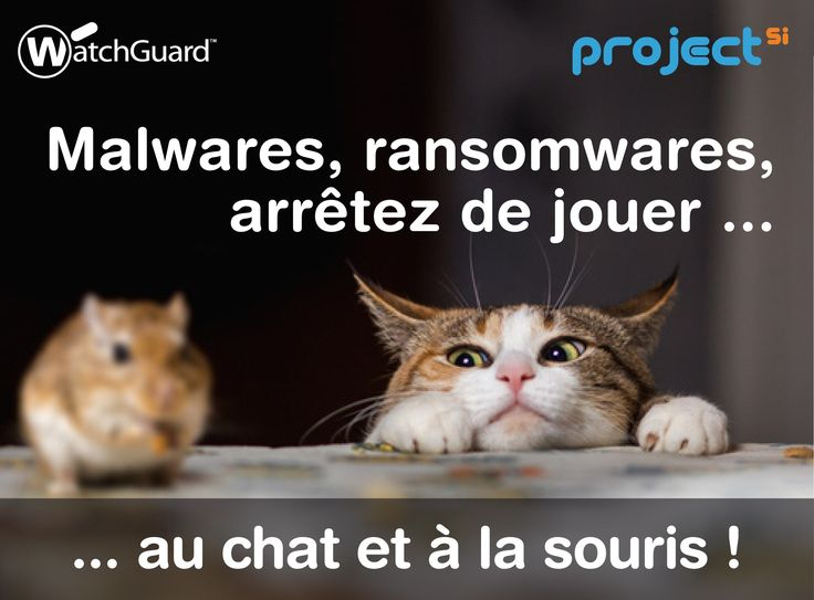 8 best watchguard images on pinterest 3 years wi fi and accessories scurit de votre entreprise et de votre informatique la solution watchguard informations au 01 40 96 asfbconference2016 Gallery