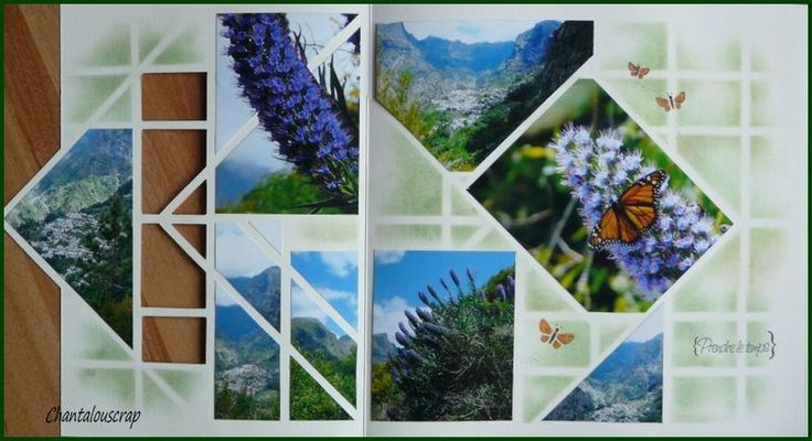 Vienne-pékin pour suivre le mouvement de ces jolies fleurs ...