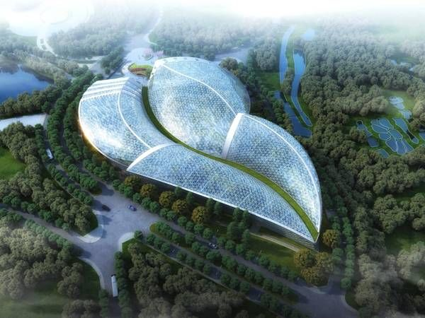 79 best images about dissertation biomimetic design and for Nautilus garden designs