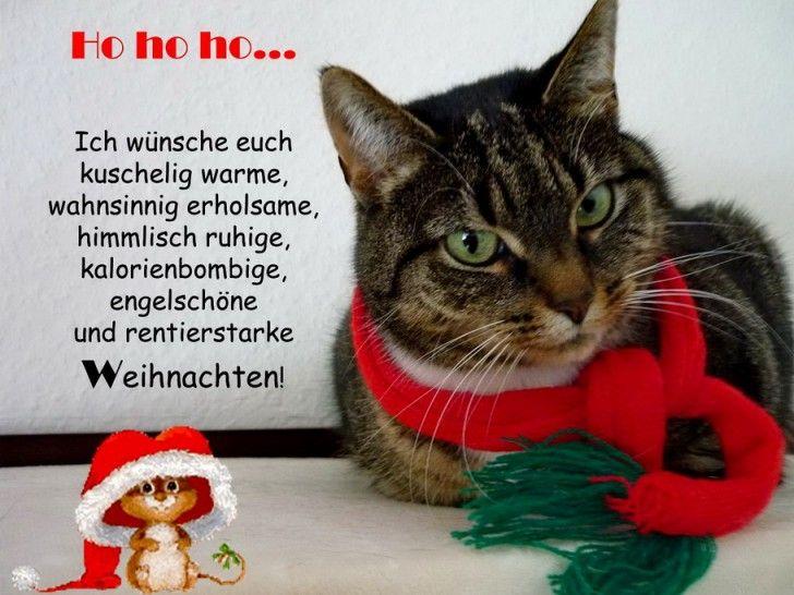 funpot: Weihnachtsgruss.jpg von Febimaus