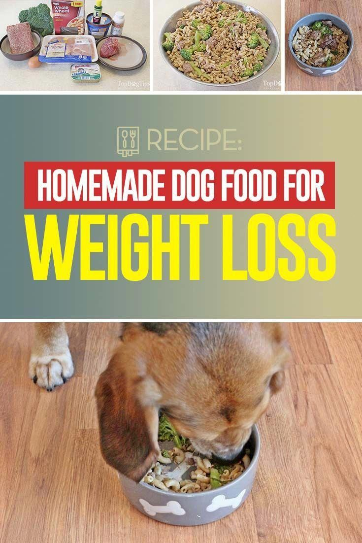 Homemade Weight Loss Dog Food Recipe For Overweight Dogs Video