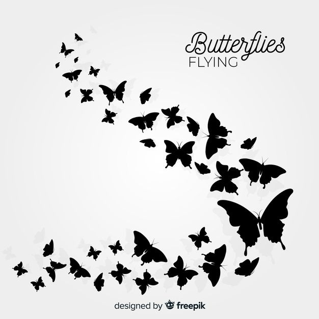 Download Butterfly Swarm Silhouette Background For Free In 2020 Silhouette Butterfly Butterfly Background Silhouette