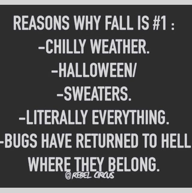 Begone, bug bastards!
