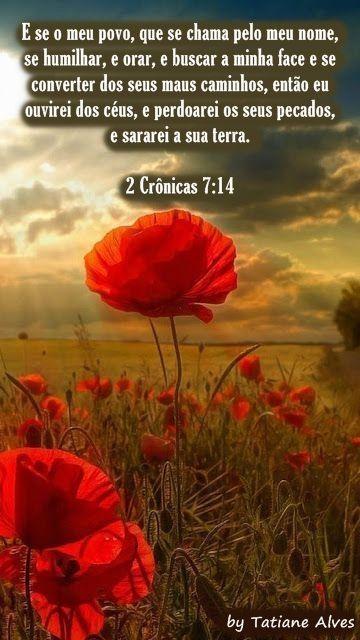 2 Crônicas 7:14