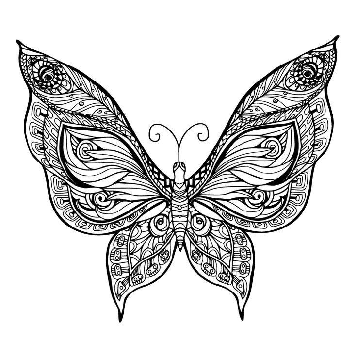 Butterfly Temporary Tattoo #804