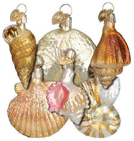 "The Jolly Christmas Shop - Old World Christmas Assorted Sea Shell Set 2""- 2 1/2"""