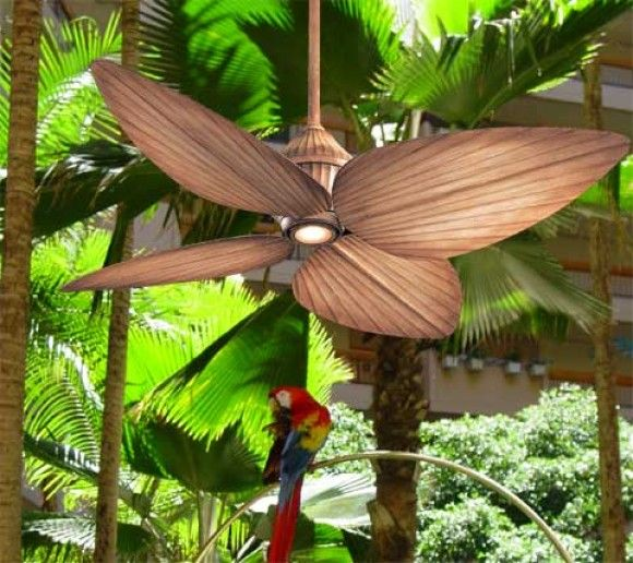Tropical Outdoor Ceiling Fans Tropical Exterior Ceiling: 487 Best Images About Boracay