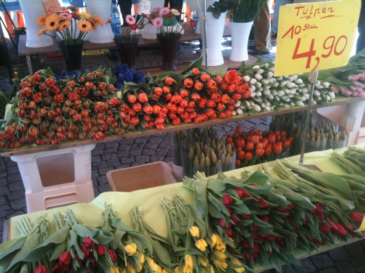 beautiful tulips in German market