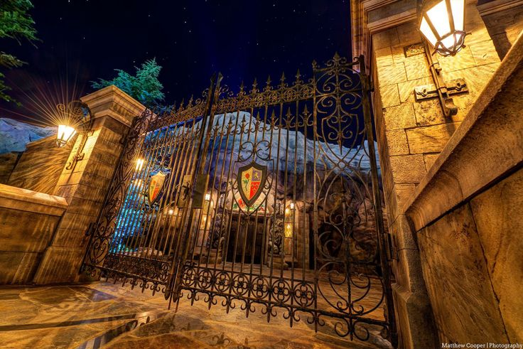 WDW Magazine photographer- Be Our Guest-The Time The Space Photography ...