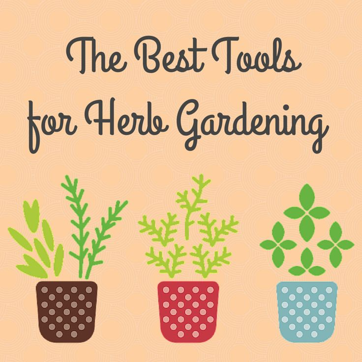 One of the nicest things about herb gardening is that you don't really need a lot of tools and supplies, just a few basics. It's perfect for beginner gardeners or for those who have minimal space.